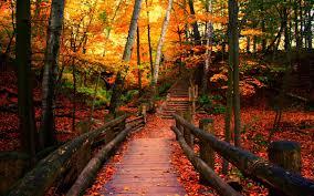 autumn-in-wisconsin